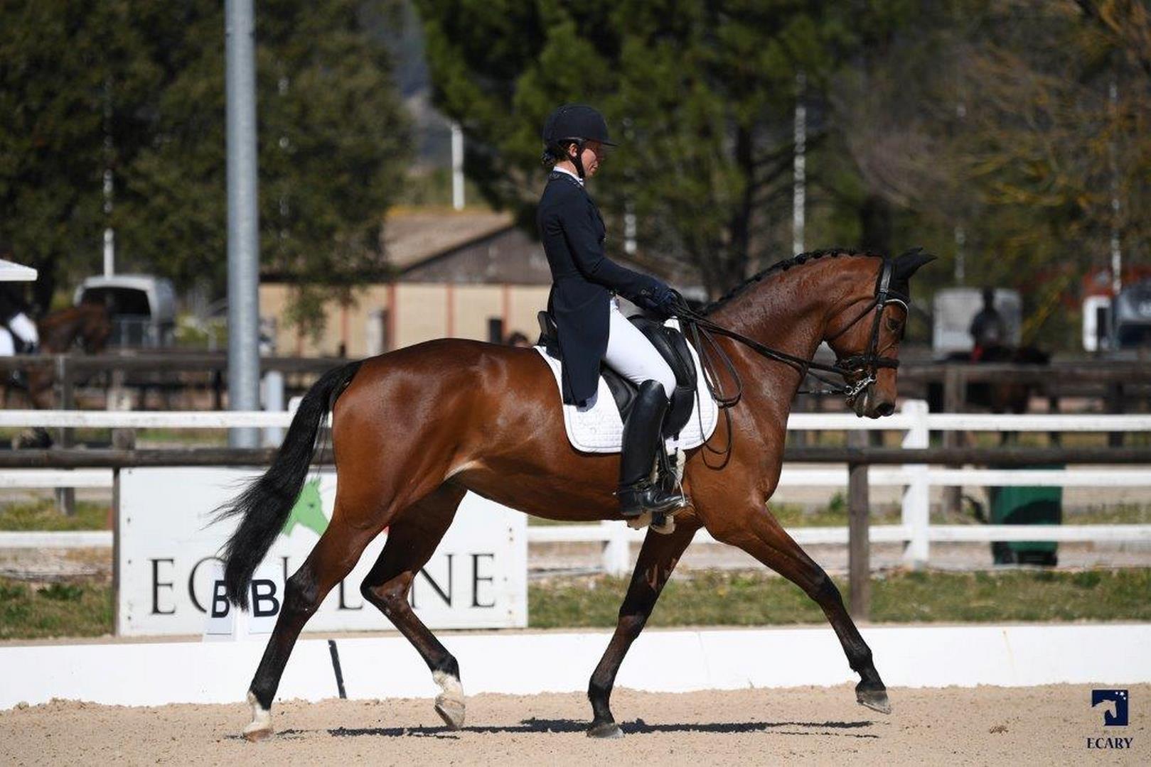centre equestre draguignan (Copier)